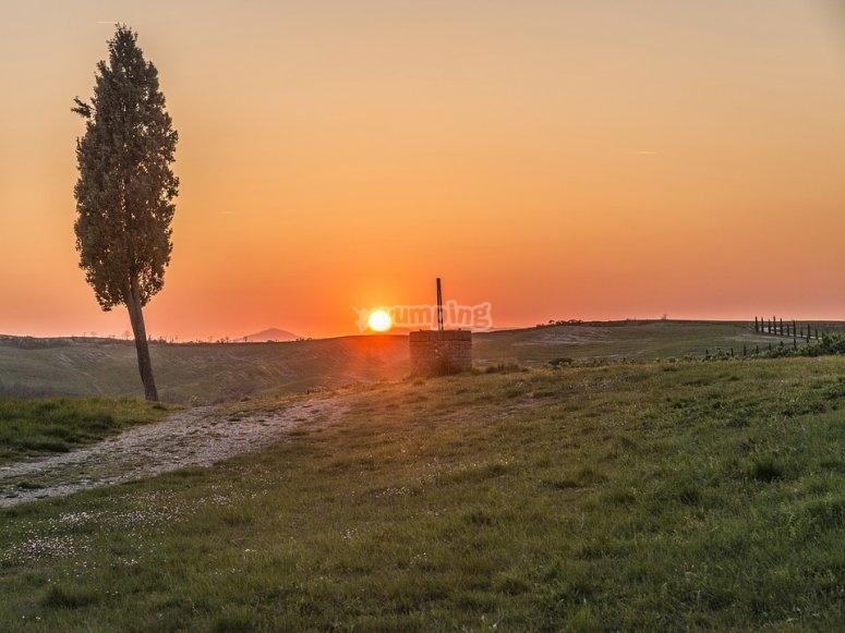 Maremma con il tramonto