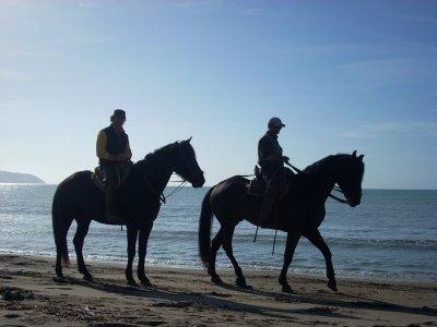Giornata a cavallo Maremma/Spiaggia delle Cannelle