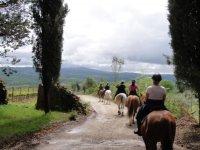 Settimane a cavallo