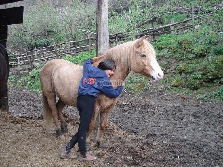Primo contatto con i cavalli