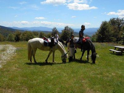 Giornata di avvicinamento al cavallo a Londa