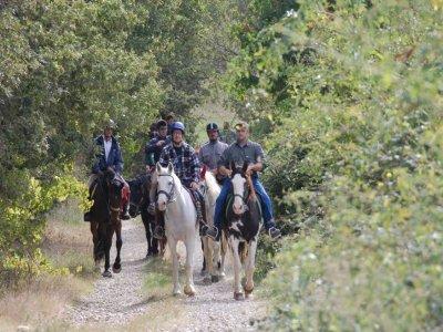 Cavalli & Natura