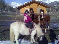 i pony per i più piccoli