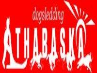 Athabaska Dogsledding