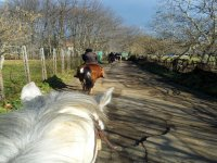 horseback excursion near naples