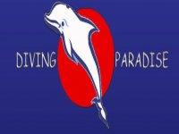 Diving Paradise Passeggiate a Cavallo