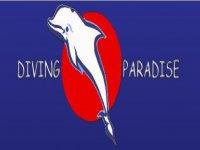 Diving Paradise Visite Guidate