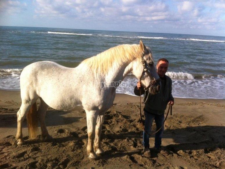 Sulla spiaggia di Ostia