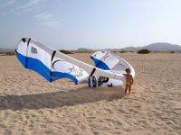 Kite on the beach