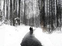 bellissimi panorami invernali