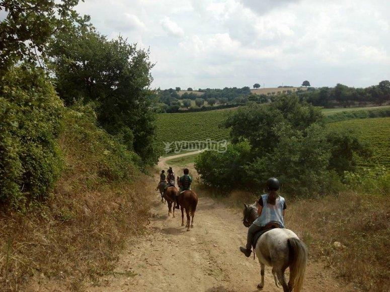 Escursione nella campagna di Roma