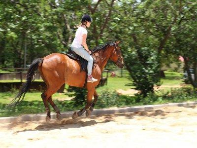 Giornata a cavallo a Castel d'Asso