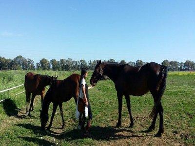 Week end a Cavallo in Toscana (2 giorni)