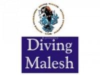 Diving  Malesh Pesca
