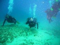 Immersione Isole Tremiti