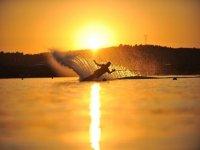 Sci nautico al tramonto