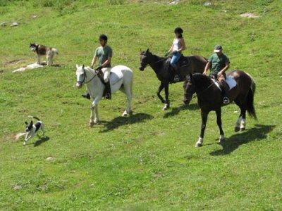 I Tesori del Sud Residence e Country House Passeggiate a Cavallo