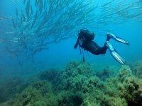 Possibilità di snorkeling