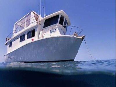 Dive and Travel Tour Operator - Viaggi SUB Noleggio Barche