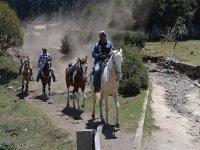 Friends in nature on horseback