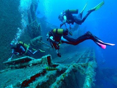 Bluenose Diving
