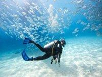circondato di pesci