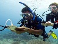 immersioni e corsi padi