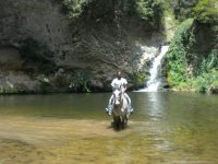 Trekking con cavalli