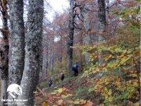 Slow trekking in the Pollino area