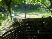 Laser tag nel bosco