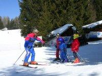 Alpine skiing courses