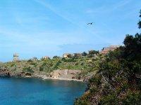 Crociera all'Elba