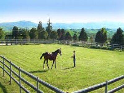 Paintball Val Fiastrone Passeggiate a Cavallo