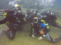 group dive!