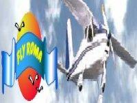 Flyroma School
