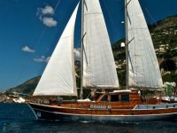 Days at sea