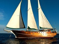 Boat rental and excursions