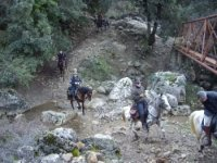 Equitazione a Cefalú