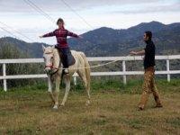 Lezio di equitazione