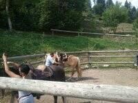MDRanch Trekking a Cavallo