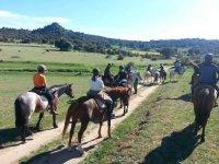 MDRanch Passeggiate a Cavallo