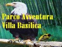 Parco Avventura Villa Basilica