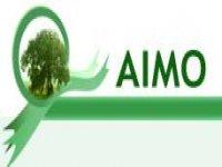 Aimo Rafting