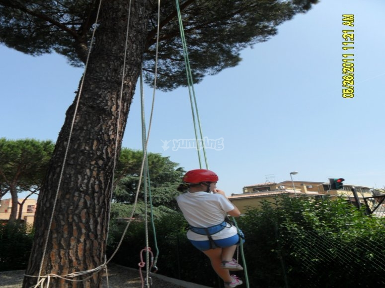 Treeclimbing ricreativo