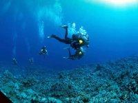 Settimana diving
