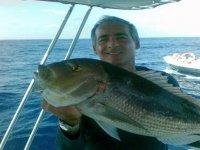 Pesce fresco di Sicilia