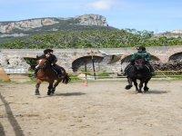 Lezioni di equitazione in campo