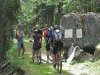 Tour mountain bike