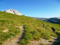 Magnificent trekking