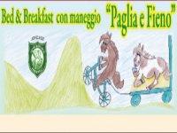 Bed and Breakfast Paglia e FIeno Passeggiate a Cavallo